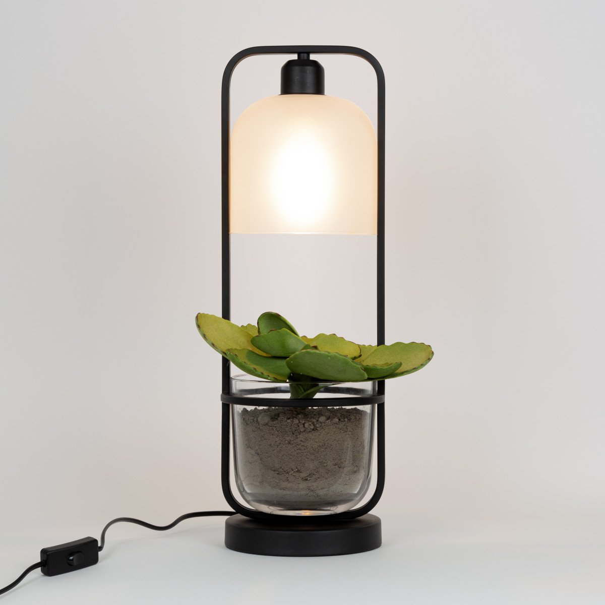 Seeds 3 staande lamp incl. plantenbakje