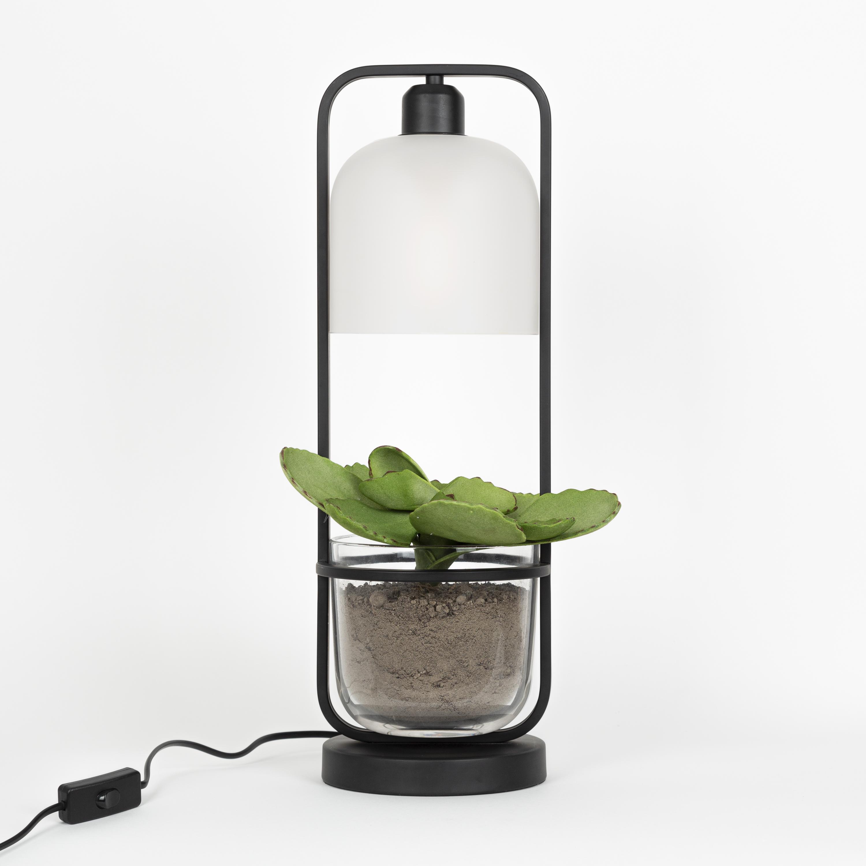 Staande lamp Seeds 3